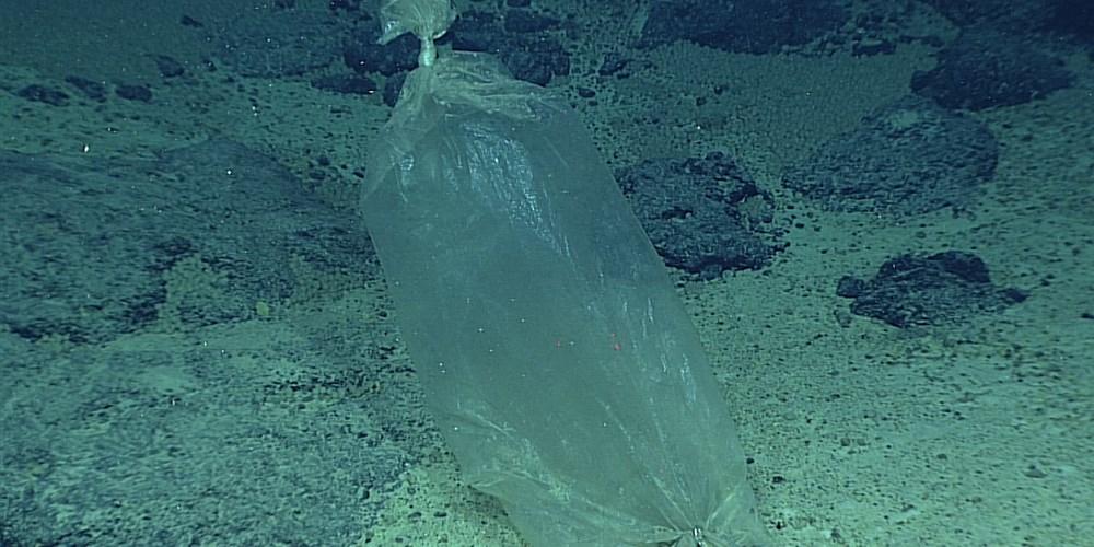1805015-mariana-trench-plastic-bag-al-1522_75afe8499f02b1dec6e4bcc556770399.focal-1000x500.jpg