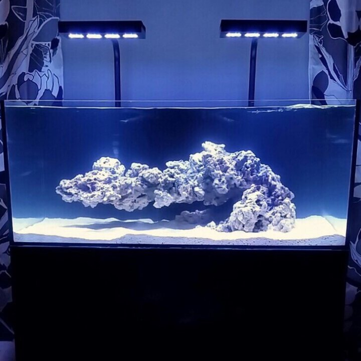 April 23, 2016 Professional Demo: Reef Aquascaping ...