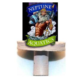 Neptunes.png