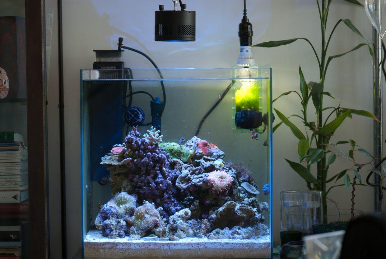 Tank02.jpg