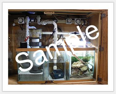 TankSpotlightSmall2.jpg