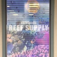 Brentwood Reef Supply